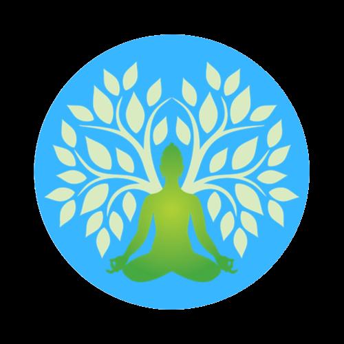 Mindfulness Pleine Conscience